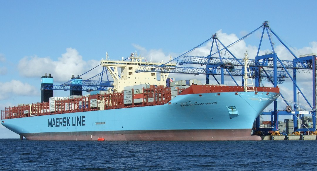 Who Are the Top performing Shipping Lines?